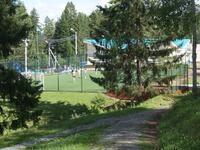 Спортивная площадка в окружении леса