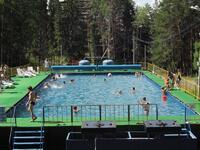 Открытый бассейн в окружении леса